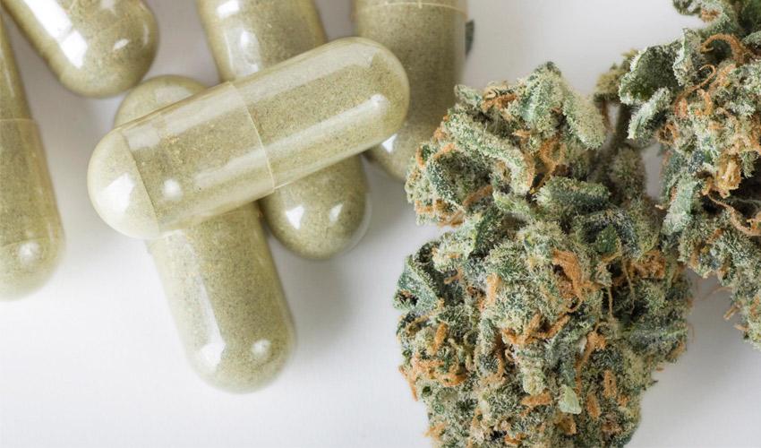 Mike Tyson quer usar a Impressão 3D para garantir uma melhor dosagem de Cannabis